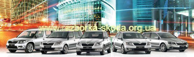 Разборка Шкода в Киеве: запчасти на автомобили Skoda по выгодным ценам