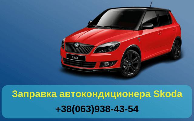 Наша компания занимается заправкой автокондиционеров для автомобилей Шкода в Киеве